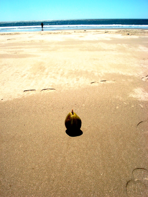 Pear on Playa Coco